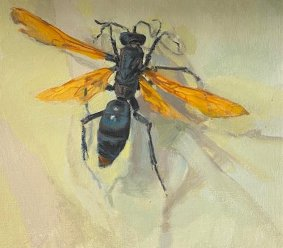 Tarantula Hawk Wasp, 2020, oil on board, 16.5x18.5cm inc. frame - £330