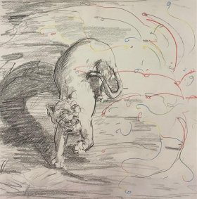 Lioness Surprised by Fireworks, 2019, pencil on paper, 32x32cm unframed - £300